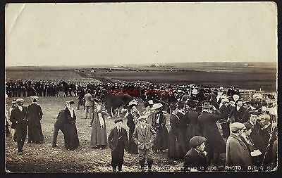 ORKNEYS Cattle Show, Dounby  1908 postcard