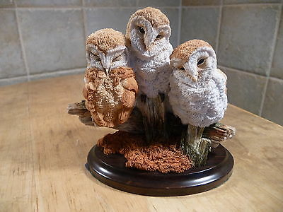 Country Artistsearly Days-Barn Owlets
