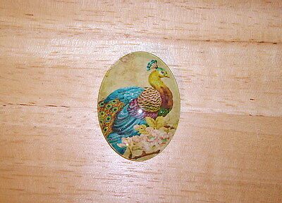 Antique Peacock Glitter Unset Handmade Art Bubble Cameo Cabochon 30X40mm