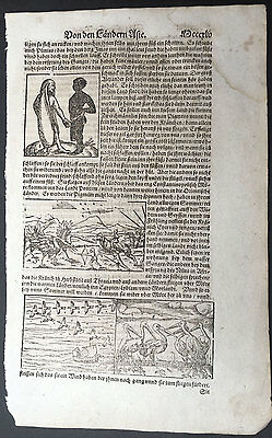 1574 Munster Antique Print of Peoples, Hunting, Birds & Animals of Asia