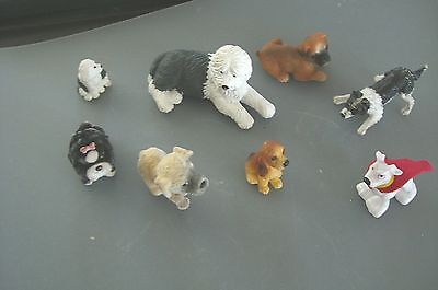 8 Mixed Miniature Dogs Models