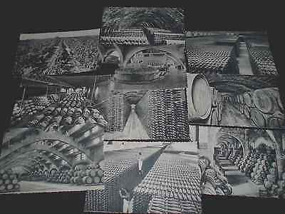 SPAIN ( ESPANA) WINE MAKING, OLD B&W 10 X POSTCARDS UNPOSTED NUMBERED 1 to 10 .