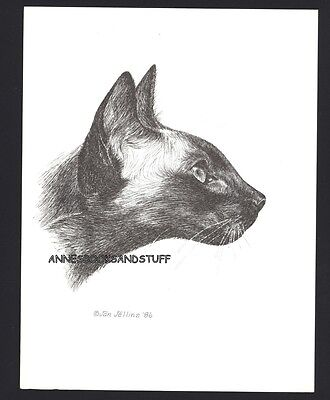 #398 SIAMESE facing right * cat art print * pen & ink drawing by Jan Jellins