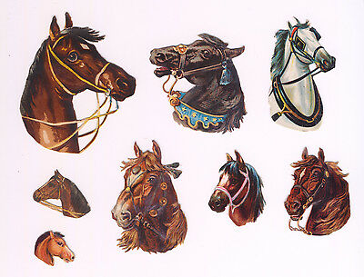 8 Lovely Embossed Victorian Scraps Horses' Heads VGC
