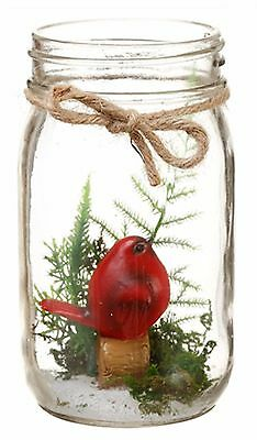 "Cardinal Terrarium in Glass Mason Jar Garden Home Decor 5"" NEW X-XAT937"