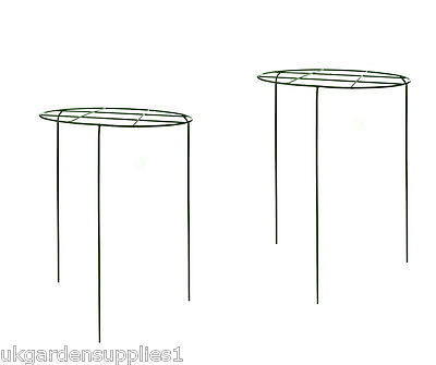 Pack of 2 - Large Green Metal Grow Thru Rings - Grow Through Plant Support