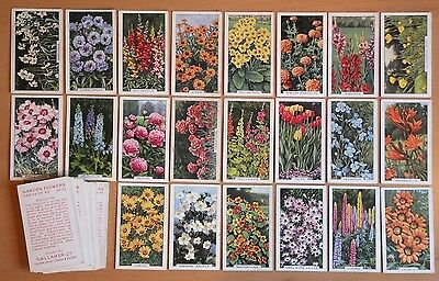 GALLAHER, GARDEN FLOWERS 1938. 45 cigarette cards from the set of 48.