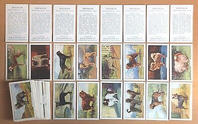 GALLAHER: DOGS (Second Series) 1938, full set of 48 original cigarette cards.