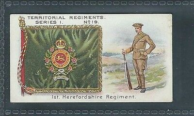 Taddy Territorial Regiments No 19 1St Herefordshire Regiment
