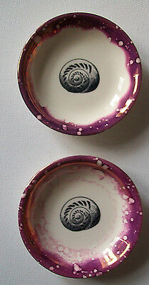 Vintage Pair Gray's Pottery Lustre Sea Nautilus Shell Dishes