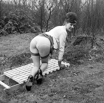1960s Nude pinup Annette French Up skirt outdoors from behind 8 x 8 Photograph