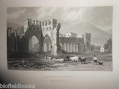Llananthony Abbey (Monmouthshire)Original 1853 Antiquarian Welsh/Wales Engraving