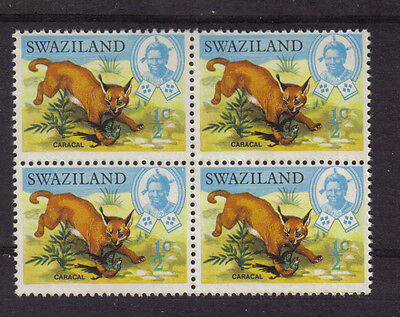 Swaziland Mint Never Hinged Mnh Block Of 4 1969 Caracal Wild Cat Superb Quality