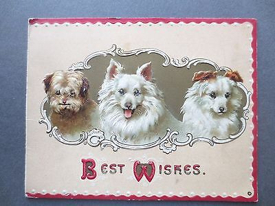 Antique Christmas Card Embossed 3 Pretty Dogs Davidson Bros Terrier Edwardian
