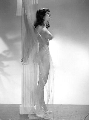 1960s Nude Pinup Leaning on Large column DDD perky breasts   8 x 10 Photograph