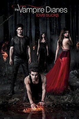 THE VAMPIRE DIARIES ~ FIRE CAST 24x36 TV POSTER  Ian Somerhalder Nina Dobrev