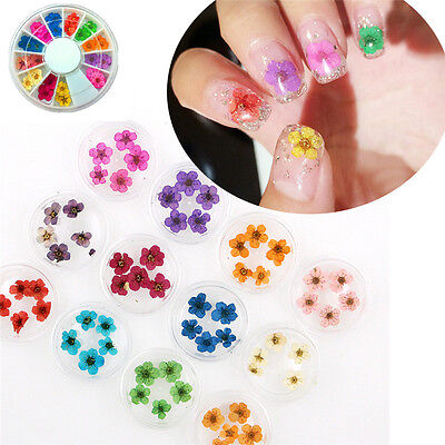 12 Color Real Dried Flower UV Gel Nail Art 3D Acrylic Decor Manicure Wheel DIY