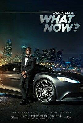 Kevin Hart What Now - original DS movie poster - 27x40 D/S  FINAL
