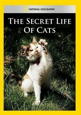 National Geographic: The Secret Life of Cats (2014, REGION 1 DVD New)