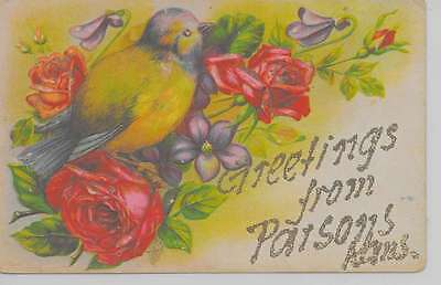 Parsons Kansas Greetings From flowers bird glittered antique pc Z28542