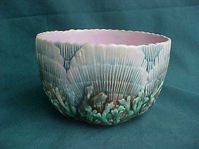 Antique Majolica Etruscan Shell and Seaweed Waste Bowl