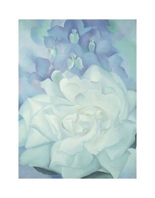 White Rose with Larkspur No. 2, 1927 by Georgia O'Keeffe Art Print Poster 11x14