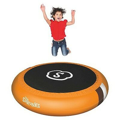 The Shrunks Inflatable Trampoline Pool