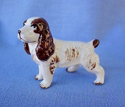 ENGLISH SPRINGER  SPANIEL MINIATURE Vintage Bone China