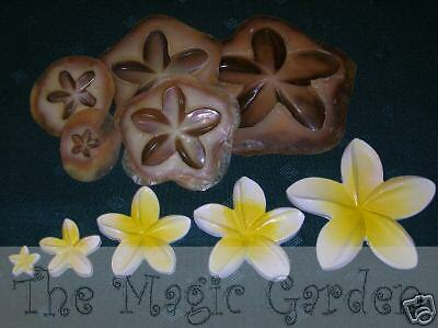 5 frangipani flower plaster craft latex moulds molds