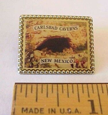 Carlsbad Caverns New Mexico Made In Usa Souvenir Pin