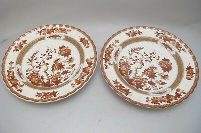 Spode Indian Tree Fluted Dinner Plate X2