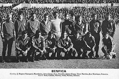 Benfica Football Team Photo 1971-72 Season