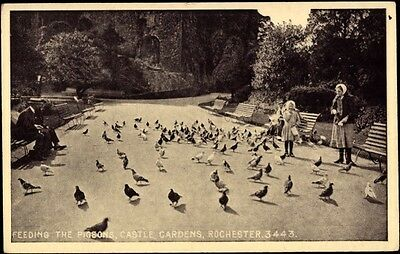 Ak Rochester South East England, Feeding the Pigeons, Castle Gardens - 729657