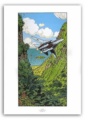 Affiche BD Francis BERGESE Poster Avion Buck Danny F-14 50x70