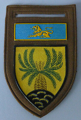 4 SOUTH AFRICA INFANTRY BATTALION ARMY 4SAI AFRICAN LION PLANT 1980's ARM PATCH