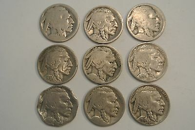 *NICE LOT 10 BUFFALO NICKELS Nickel Coins Coin 1919 1920 1929 S 1936 1937 1938 D