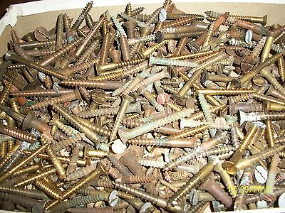 """5+ Pounds Of Old """"brass"""" Slotted Flat-Head Wood Screws, Lots Of Different Sizes"""