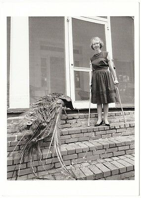 Flannery O'Connor American Author in 1962 Modern Postcard