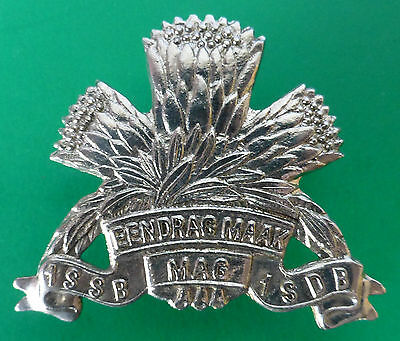 1 Special Service Battalion South Africa Armoured Corps Protea Cap Badge #2