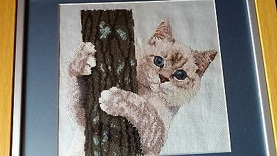 Embroydery cross stitch style cat picture