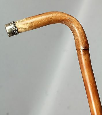 Antique 19c Shell Motif Sterling Silver Tipped Bamboo Cane Walking Stick