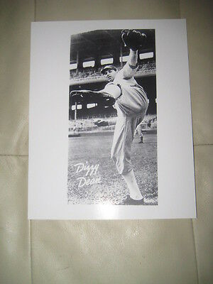 Dizzy Dean  8 X 10 Unsigned Picture
