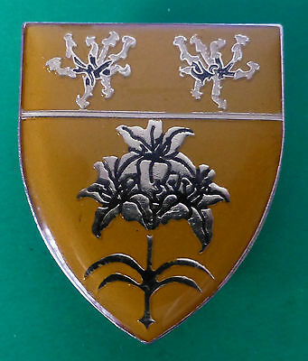 SOUTH WEST AFRICA MALTAHOHE AREA FORCE UNIT 1980s BORDER WAR PLANT BREAST BADGE