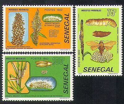 Senegal 1982 Nuisance Insects/Pests/Nature/Moths/Caterpillars 3v set (n36582)