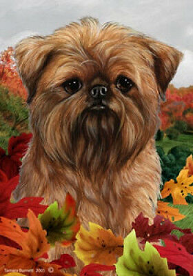 Large Indoor/Outdoor Fall Flag - Brussels Griffon 13128