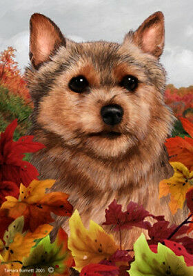 Large Indoor/Outdoor Fall Flag - Norwich Terrier 13152