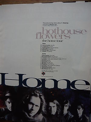 Hothouse Flowers - Magazine Cutting (Full Page Advert) (Ref Se)