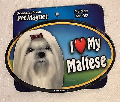 "Scandical I Love My MALTESE Dog Laminated Car Pet Magnet 4"" x 6"" NEW MP153"