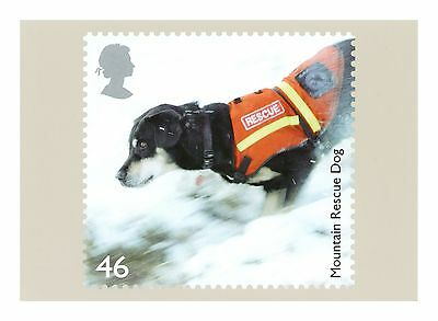 SEARCH and  RESCUE DOG - SARDA MOUNTAIN RESCUE DOG ROYAL MAIL PHQ POSTCARD 2008