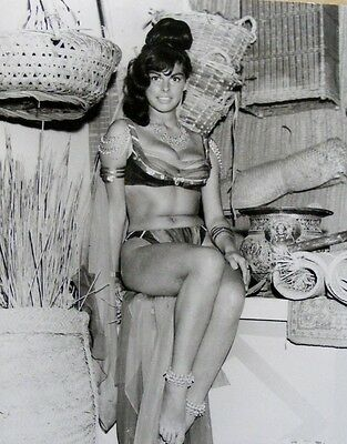 "Sally Douglas Carry on Films 10"" x 8"" Photograph no 2"